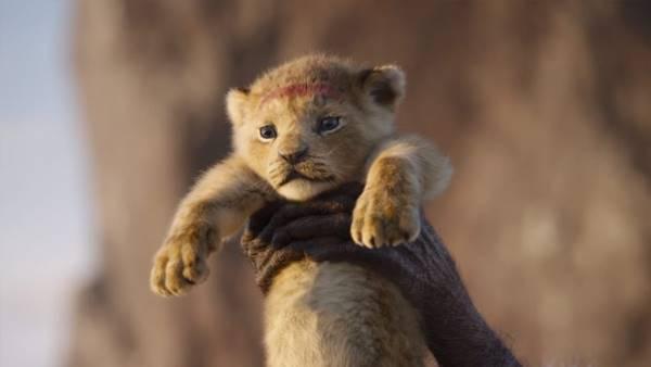 filme o rei leão 2019